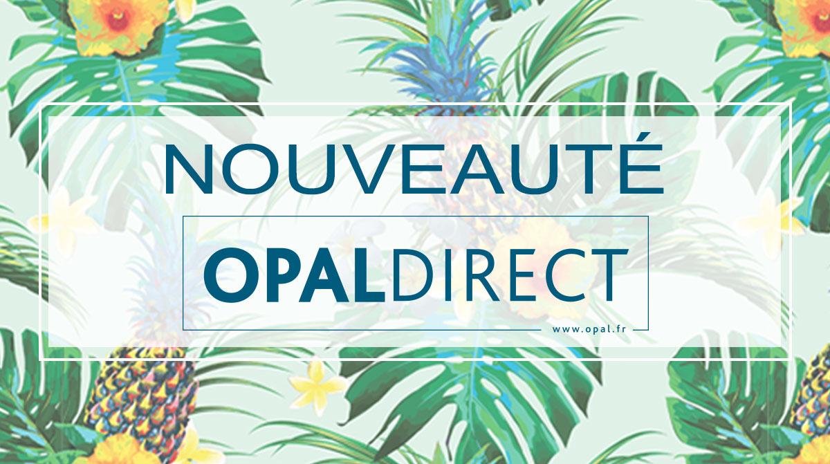 OpalFR Actu Bdx OD